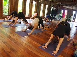 200 hour yoga teacher training thailand pure nature yoga
