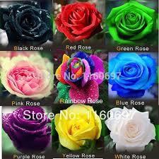 free shipping flowers free shipping flowers seeds mix 9 colour seeds 540pcs flower