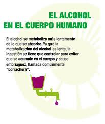 diez cosas para evitar en alco armarios mejores 10 imágenes de alcoholismo cerebro adicciones