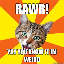Yay Meme - rawr yay you know it im weird cat meme cat planet cat planet