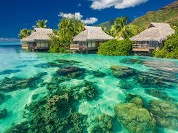 tropical sunshine paradise summer palms sea wallpaper