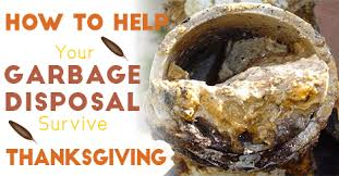 how to help your garbage disposal survive thanksgiving