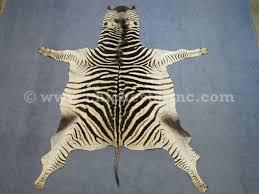 african zebra skins zebra skins zebra hides zebra rugs