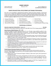 business development executive resume business development executive resume starting successful