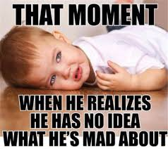 Tantrum Meme - colour outside the lines adult temper tantrums