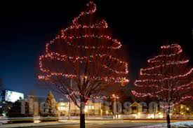 christmas lights tree wrap spiral wrap tree in lights house christmas lights pinterest