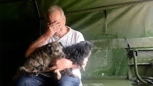 pets animal news funny stories u0026 more