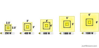 250 watt hid grow lights planning your indoor garden just for growers