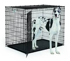 Dog Crate Covers Tips Dog Cage Divider Midwest Dog Crates Retriever Dog Crate