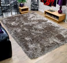 decor u0026 accessories exciting shag rug 8x10 design ideas bring
