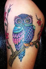 Owl Tattoos - best 25 colorful owl ideas on owl sketch owl