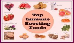 food u0026 nutrition nigerianmedicals