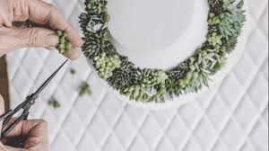 amazon succulents wearing succulents as jewelry is the new accessory craze