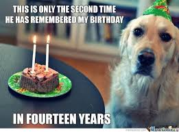 Birthday Dog Meme - sad birthday dog by 123papas meme center