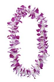 graduation leis order graduation leis from hawaii s best supplier leis by