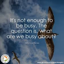 education quotes henry david thoreau it u0027s not enough to be busy henry david thoreau gbri