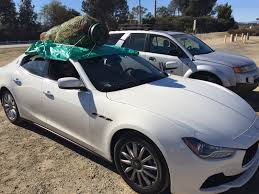 ghibli christmas tree delivery service maserati ghibli forum