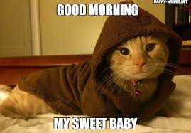 Good Morning Sunshine Meme - 20 good morning memes to brighten up your day word porn quotes