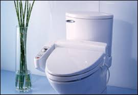 Bidet Toto Toilet Seat The Toto C100 Chloe Bidet Toto U0027s Most Affordable Toilet Seat