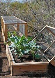 Backyard Greenhouse Diy How To Build Cold Frames Cold Frame Gardens And Garden Ideas