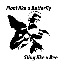 13cm 13 7cm car styling like a butterfly float sting like a bee