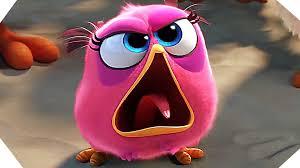angry birds movie trailer 2016 animated film