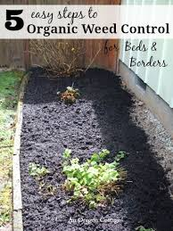 5 easy steps to organic weed control for beds u0026 borders