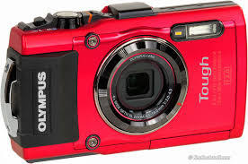 best digital camera for action shots and low light the best camera for sports for landscapes for portraits for kids