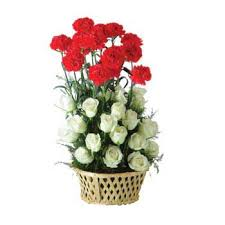 Red Carnations Red Carnations And White Roses Arrangement Dial A Bouquet