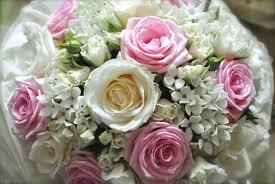 wedding flowers pink 28 pink flowers for weddings edmonton wedding pink wedding