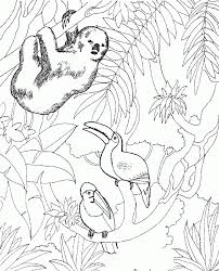 zoo critters coloring snapshot image woodys zookeeper