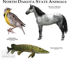 North Dakota wildlife images Wildlife art state animals jpg