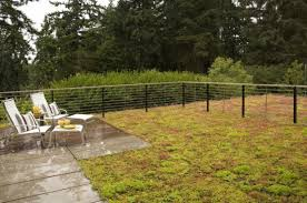 Backyard Fence Stunning Decoration Backyard Fence Ideas Exciting 1000 About