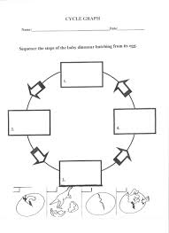 life cycle of a flower worksheet bing images growing gardens