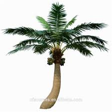 Fake Tree by Fake Coconut Tree Fake Coconut Tree Suppliers And Manufacturers