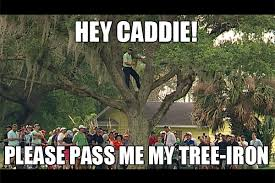 Tree Meme - tree iron please caddie 19th hole the golf blog from your golf