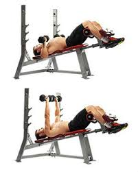 Bench Pressing With Dumbbells Decline Bench Press Benefits U0026 How To Perform