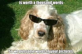 Creation Meme - google gets photo meme creation tool slashgear
