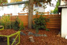new backyard wood fence andrew l scheidt architect aia ncarb