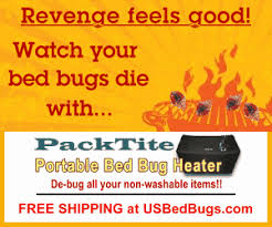 How To Avoid Bed Bugs Avoid Bringing Bed Bugs Home When You Travel Kill Bed Bugs In Luggage