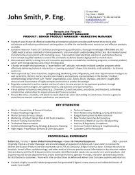 Resume Seo Cover Letter Sales And Marketing Executive Resume Format Sales