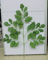 Artificial Tree For Home Decor Artificial Oak Tree Artificial Oak Tree Suppliers And