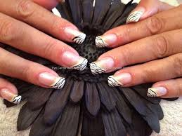 eye candy nails u0026 training acrylic nails with zebra print nail