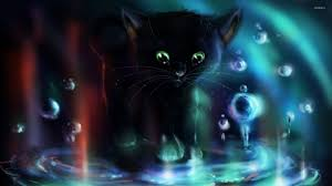 halloween cat wallpaper black kitten wallpaper 44 black kitten android compatible photos