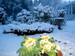 snow in ridgefield u2014 fyi 98642