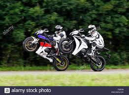 honda cbr fireblade 2 motorcycles honda 1000 rr and honda fireblade cbr wheelie