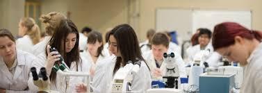 Human Anatomy Careers University Of Glasgow Undergraduate Study Degree Programmes A