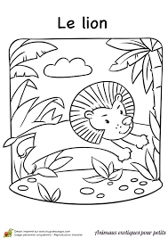 un dessin de lion dans la jungle à colorier coloriages animaux