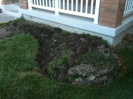diy landscaping project u2013 fixing drainage in backyard front yard