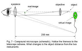 a light microscope image is formed by lenses to optical instruments